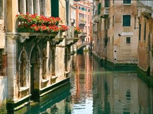 сайт.венеция
